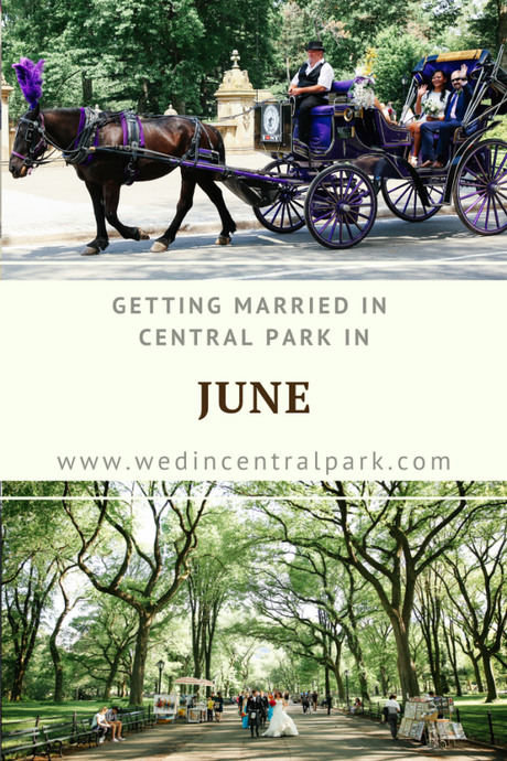 Getting Married in Central Park in June