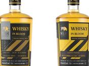 Review Milk Honey Distillery Whisky Expressions