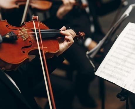instrumental wedding songs violin musician