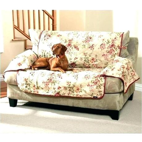outdoor pet furniture covers sofa dog proof chairs for pets