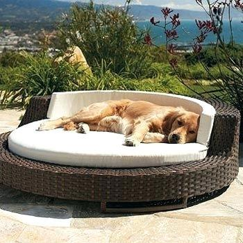 outdoor pet furniture sofa cover pin on home inspired