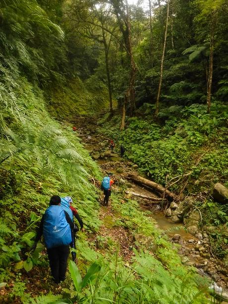 Tres Marias Peak 2: Of Canyons Deep and Forests Old