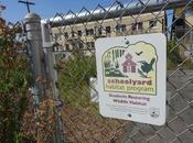REBUILDING NATURAL HABITAT: Visit Esperanza School, Angeles