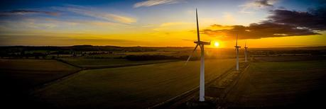 UK Companies: Who's Going Carbon Neutral?