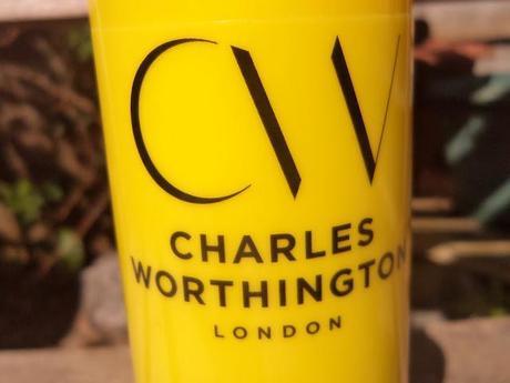 Charles Worthington Sunshine Leave-In UV Hair Spray
