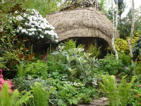 rhodedendrons in chris beardshaw's garden at chelsea