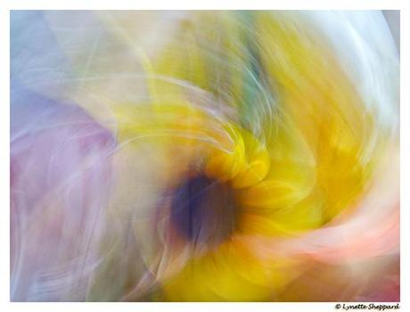 Menopause at Age 29 – Goddess Needs Help