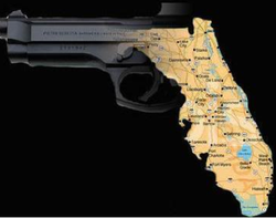 Latyest Gun Control Polls from Florida