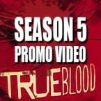 Promo for Conjuring up True Blood Season 4