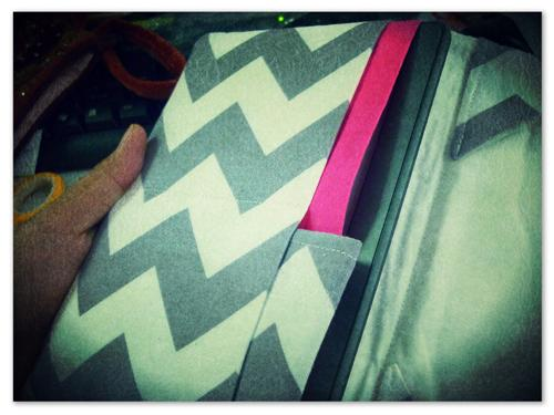 An Oh-So-Cute Cover for My Kindle Touch