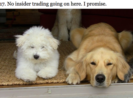 Zuckerbergs Play 'Wag The Dog' To Distract FB's Stock Plummeting?