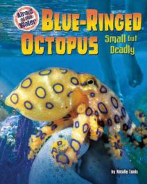 Deadly Blue-ringed Octopus Expanding Its Range Due To Global Warming