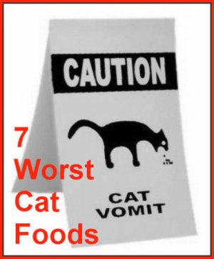 The 7 Worst Foods You Can Feed Your Cat