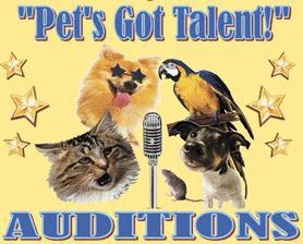 Top Ten American (& Japanese) Pets Got Talent (VIDEOS)