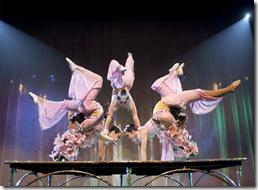 Review: Cirque Shanghai – Year of the Dragon (Navy Pier)