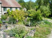 West Littleton Open Gardens