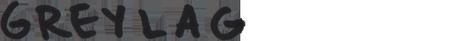 greylag title SASQUATCH! 2012 RECAP [FESTIVAL]