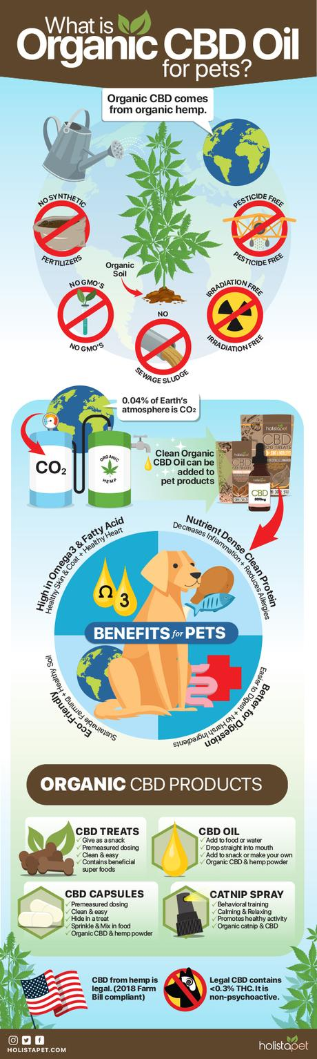 Organic Cbd Oil for Dogs