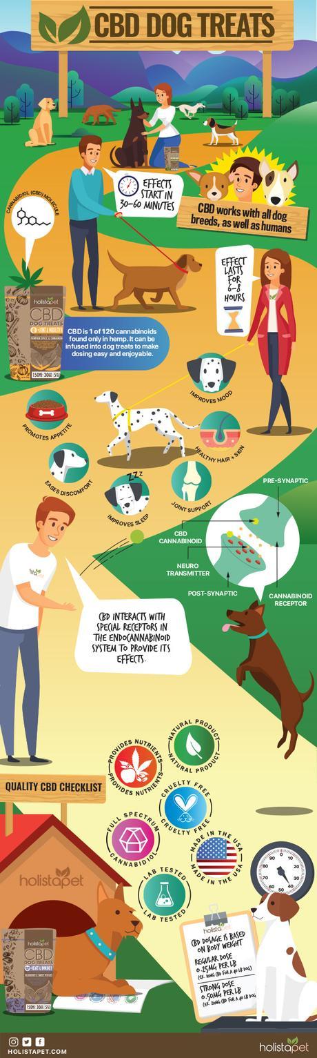 Quality CBD Dog Treats