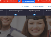 Sprintzeal Review 2020: Best Online Course Learning Platform? [Drafted]