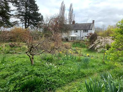 How we can help support closed nurseries, gardens and gardeners