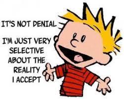 denial-cartoon   Breaking The Code