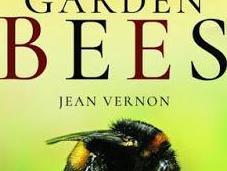 Book Review Secret Lives Garden Bees Jean Vernon