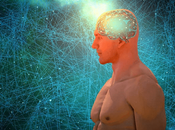 Best Course Artificial Intelligence Beginners