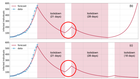 COVID-19 and Modeling the Lock Down: Some Thoughts on a Viral Paper
