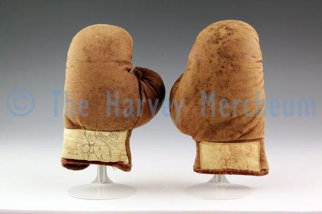 Joe Palooka children's boxing gloves front view