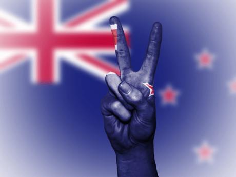 Top 15 Ways To Make Money Online Nz (New Zealand) 2020