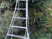 Product Review Henchman Tripod Ladder