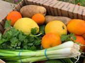 Variety Fruits Vegetables Shipping