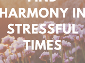 Spiritual Tools Find Harmony Stressful Times