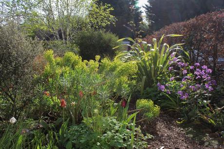 The Front Garden – Bringing Joy