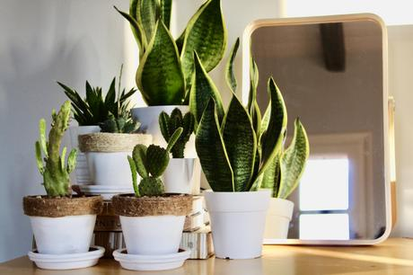 Four Easy and Fun DIY Home Decor Projects