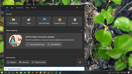 Visual search icon available in windows 10 search ui