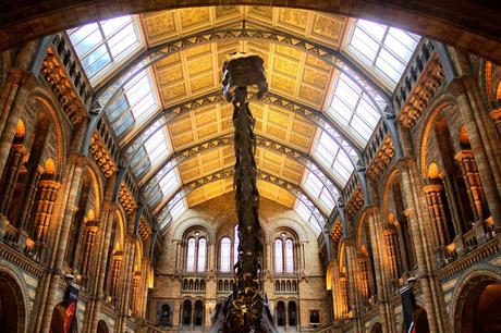 How Many London Museums Can You Visit In One Day?