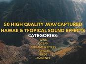 Jakob Owens Productions Tropical Hawaii Sound Effects Pack Vol.1