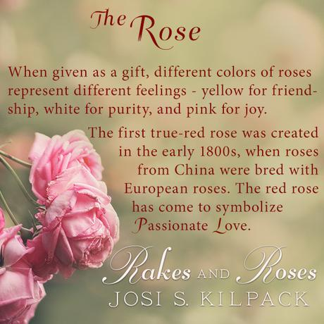 RAKES AND ROSES BLOG TOUR OPENS TODAY!