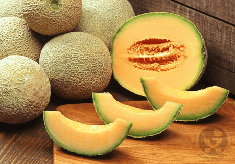 With lots of nutrients, muskmelon is one of the healthiest fruits. But Can I give my baby muskmelon? Let's find out about this and more.