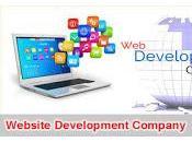 Website Development Company Have Group Professional Designers Developers