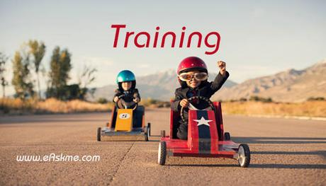 What are the Best Training Products for an Online Business?