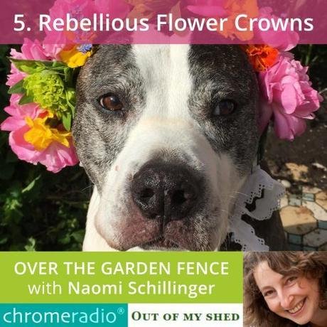 The Rebellious Flower Crown Challenge