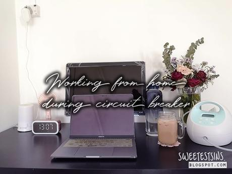 10 Work From Home Essentials