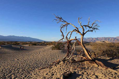The Top 7 Hikes in Death Valley California