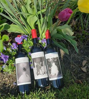The Celebrities of Bodega San Valero (BSV)