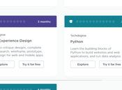 Treehouse Udacity 2020: Which Winner Affordable