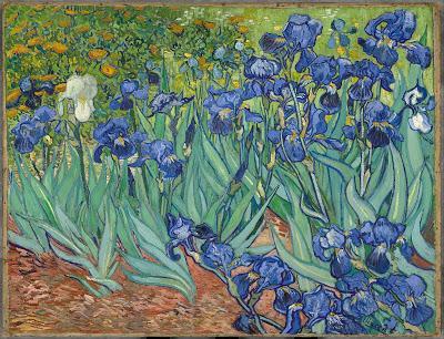 Hoboken Irises @3QD – with thoughts on iris dwellers and iris galaxies