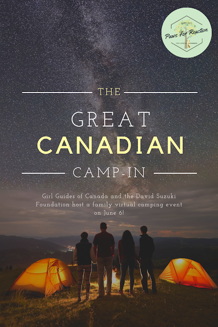 Girl Guides of Canada and the David Suzuki Foundation host The Great Canadian Camp-in